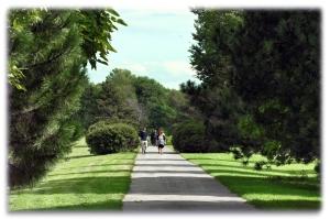 Trois promenades