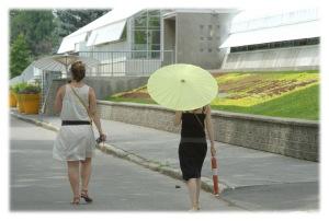 Sous l'ombrelle
