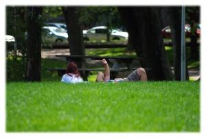 Conversation sur l'herbe