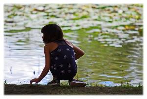 Lacs des nénuphars