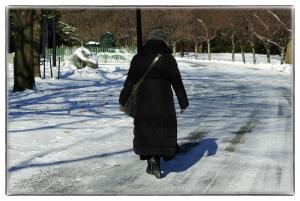 Temps des promenades